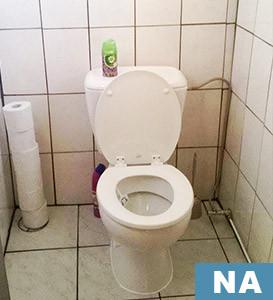 vernieuwing toilet klusser mario